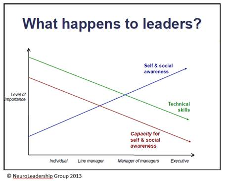 neuroscience-and-leaders