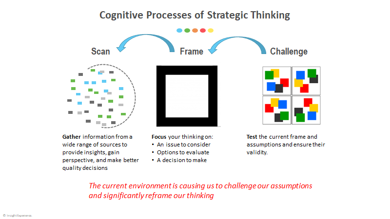 Strategic Thinking in Crisis Model, Insight Experience